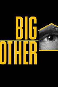 Poster for Big Brother (2000) S16E01.