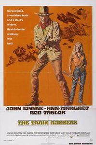 Poster for The Train Robbers (1973).